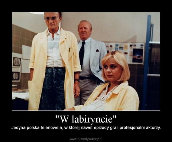 Top polskich seriali zdzieciństwa
